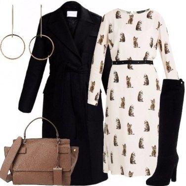 Outfit Gattini