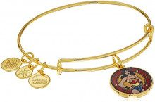 Alex and Ani Braccialetto Estensibile da Donna con Charm in Ottone, Oro