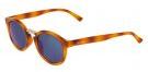 FITZROY - Occhiali da sole - tortoise/dark blue