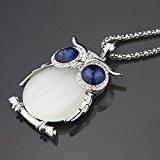 Le Premium - catena lunga collana con pendente grande occhio saggezza gufo in cristallo occhio blu zaffiro