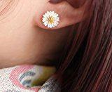 Monili della signora, orecchini della donna, orecchini della ragazza