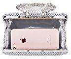 CLOCOLOR Borsa Pochette a mano delle donne con diamanti cristalli luminosi borsetta stile elegante deluxe borsa festa sacchetto di sera