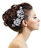 Ever Faith Nozze di cristallo austriaco dei capelli Fiore Pettine 6 pollici trasparente silver-tone A06765-2