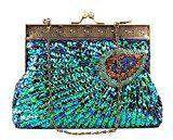 La Desire Fascetta Handmade dell'innamorato del pavone ha bordato la borsa del sacchetto di cerimonia nuziale della borsa di sera ricamata