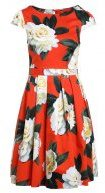 Dorothy Perkins FLORAL Vestito estivo orange
