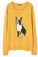 DOG - Maglione - curry