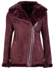 Dorothy Perkins BIKER  Giacca in similpelle red