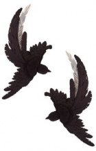 Olgafacesrok - 'Lucid dream' metal feather bird earrings - women - Polyamide - OS - BLACK