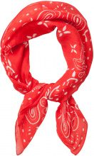 PIECES Small Printed Scarf Women Red