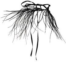 Ann Demeulemeester Blanche - feather necklace - women - Cotton/Ostrich Feather - One Size - BLACK