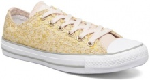 Chuck Taylor All Star Ox F16 W