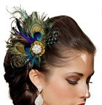 Jelinda? Women's Peacock Feather Bridal Wedding Hair Clip Hair Fascinator by Jelinda