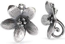 Trollbeads Donna 925 argento